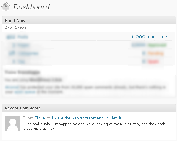 1000th comment blog winner